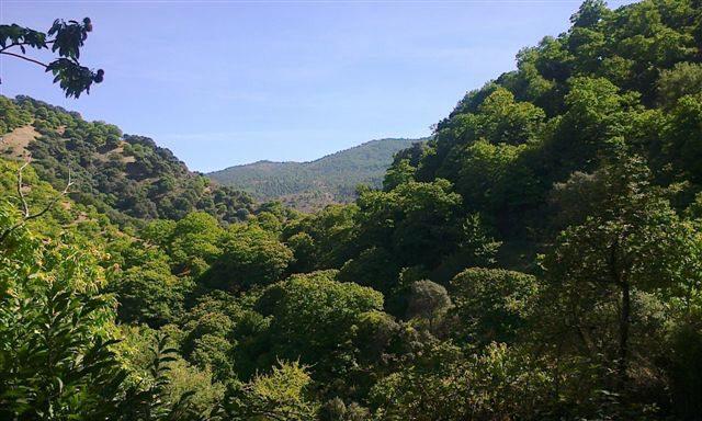 valle Genal