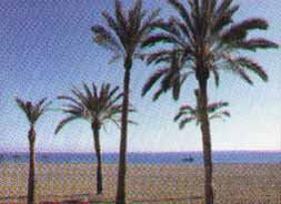 Costa del sol beaches