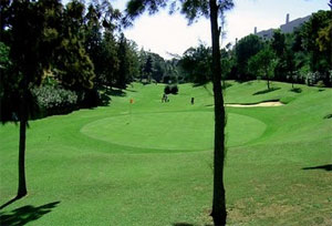 la siesta golf course