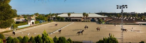 Equestrian School in Marbella