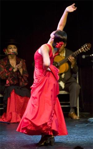 Flamenco In Marbella Tourist Guide And Shows