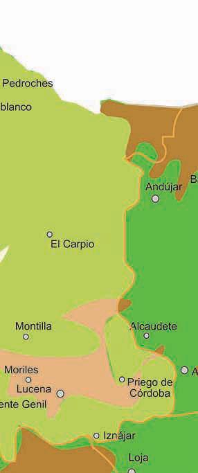 Cordoba Mapa De Pueblos Cordoba Informacion