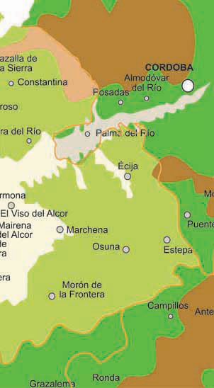 Map of Seville Towns and Villages