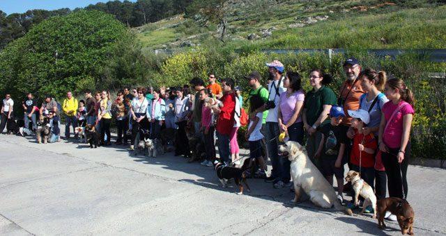 Feria del perro