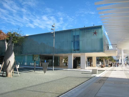 malaga museos 4 -alborania