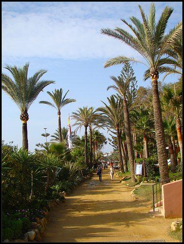 natural africano paseo en Marbella