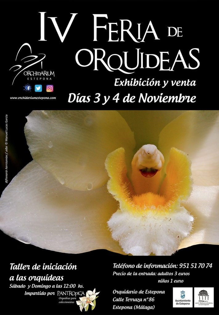 Feria Orquídeas Eetepona